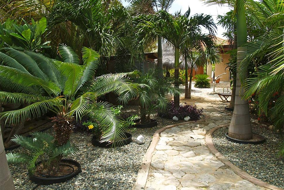 Aruba-lodging