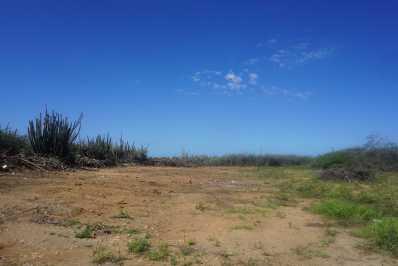 San Barbola land (1)