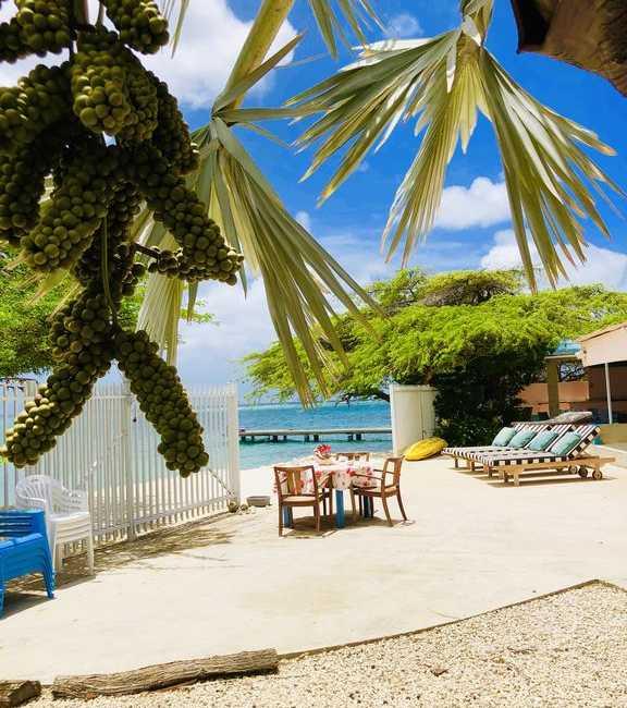 Beachfront Two-Villa Estate 22