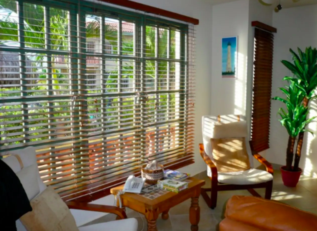 Longterm rental - Palm real Aruba 7