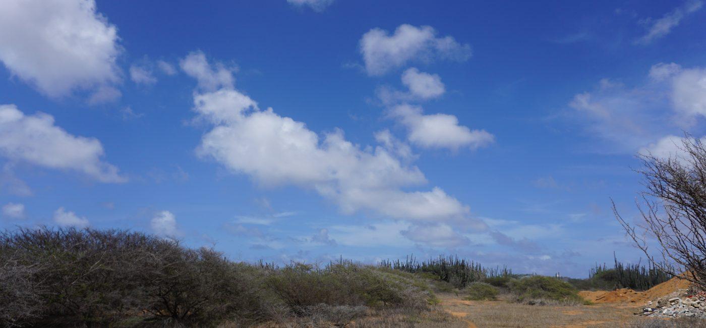 Matadera land (1)